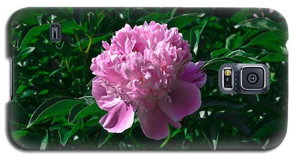 Peony Galaxy S5 Case