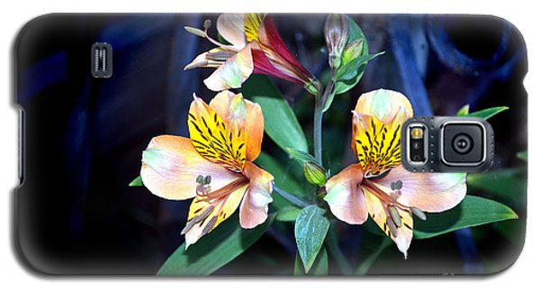 Peruvian Lily In My Garden Galaxy S5 Case