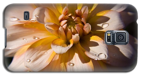Galaxy S5 Case featuring the photograph Petal Beauty by Tyra  OBryant