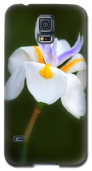 Petite Flower Galaxy S5 Case by Patrick Witz