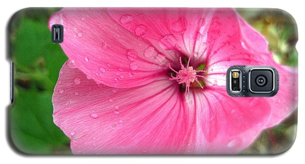 Galaxy S5 Case featuring the photograph Rain Floral by Kathy Bassett