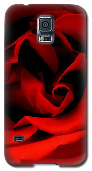Photograph Of A Red Rose Galaxy S5 Case by Perla Copernik
