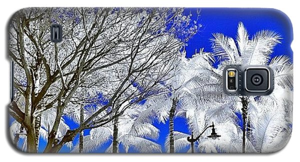 Famous Artist Galaxy S5 Case - #photographer #instapassport #instamood by Tommy Tjahjono