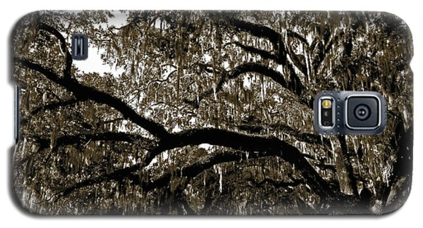 Galaxy S5 Case featuring the photograph Picnic Under The Oak by DigiArt Diaries by Vicky B Fuller
