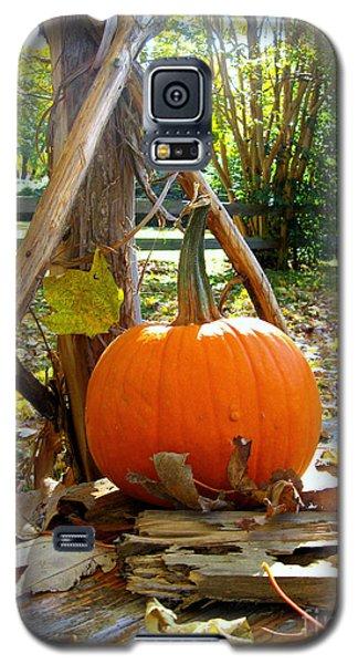 Pie Galaxy S5 Case by Nancy Dole McGuigan