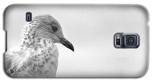 Pigeon Pride Galaxy S5 Case