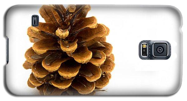 Pine Cone Galaxy S5 Case