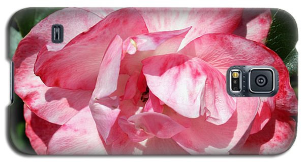 Pink And White Rose Galaxy S5 Case