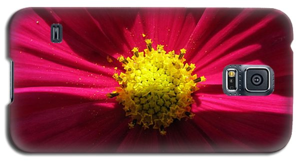 Galaxy S5 Case featuring the photograph Pink Beauty by Tina M Wenger