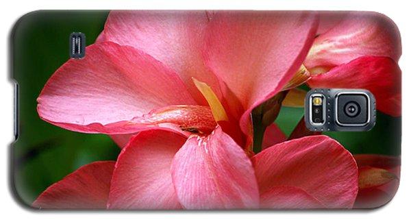 Pink Canna Galaxy S5 Case