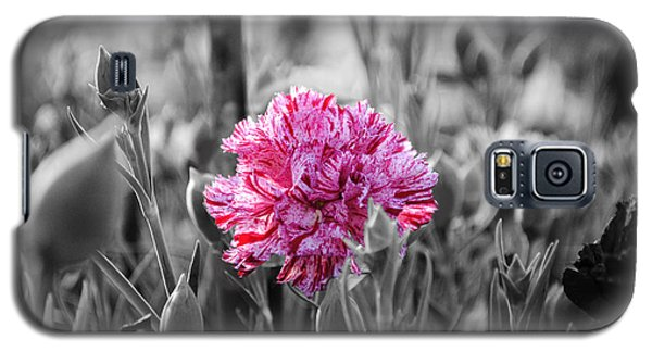 Pink Carnation Galaxy S5 Case by Sumit Mehndiratta
