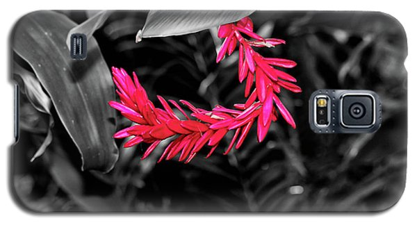 Galaxy S5 Case featuring the photograph Pink Curve by Rachel Cohen