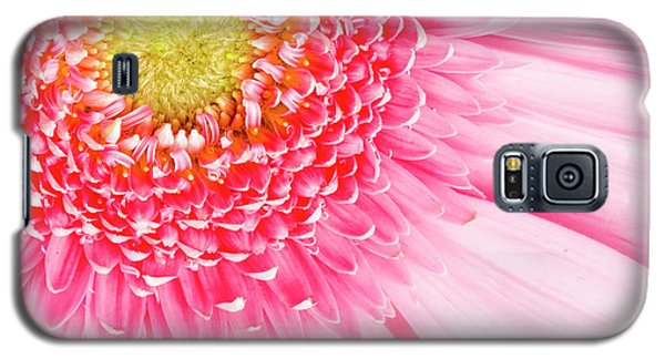 Pink Delight II Galaxy S5 Case by Tamyra Ayles