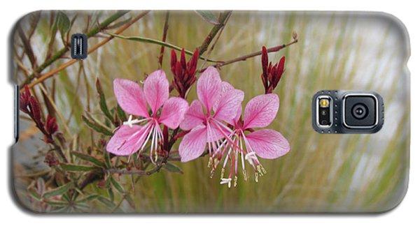 Pink Fountain - Guara Galaxy S5 Case