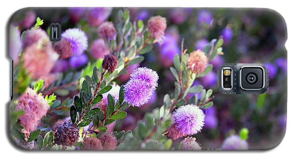 Galaxy S5 Case featuring the photograph Pink Fuzzy Balls by Clayton Bruster