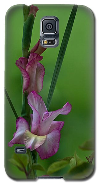 Galaxy S5 Case featuring the photograph Pink Gladiolus by Ed Gleichman