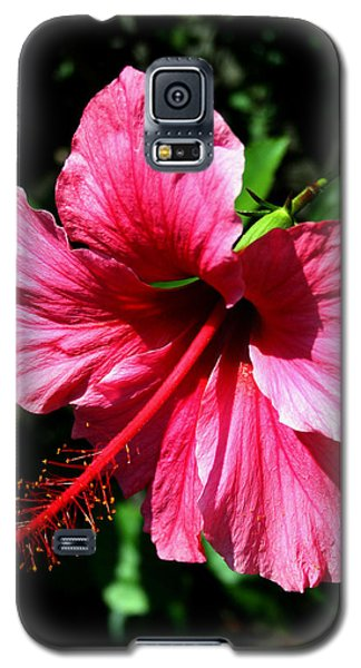 Pink Hibiscus2 Galaxy S5 Case