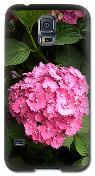Galaxy S5 Case featuring the digital art Pink Hydranga by Claude McCoy