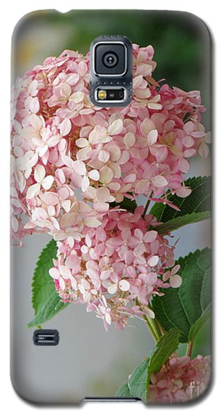Pink Hydrangea Galaxy S5 Case by France Laliberte