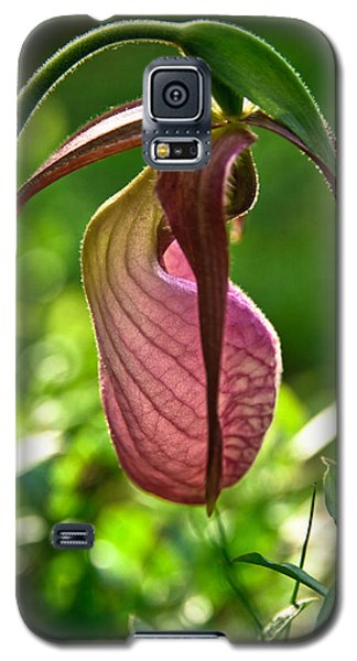 Pink Lady's Slipper Galaxy S5 Case by Robert Clifford