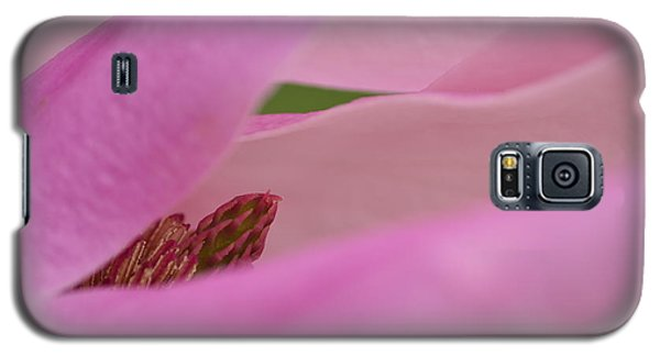 Pink Magnolia Galaxy S5 Case by JD Grimes