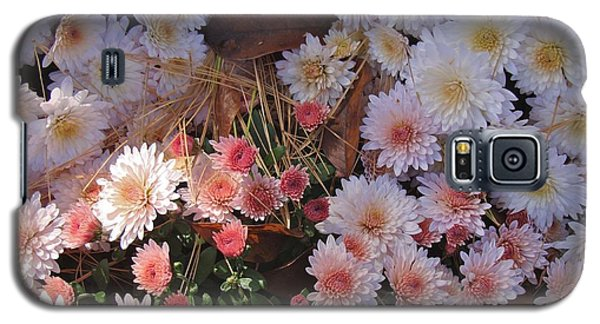 Galaxy S5 Case featuring the photograph Pink Mum by Joseph Yarbrough