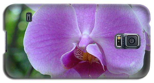 Pink Orchid Galaxy S5 Case