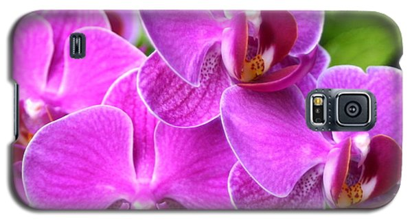 Pink Orchids B Galaxy S5 Case