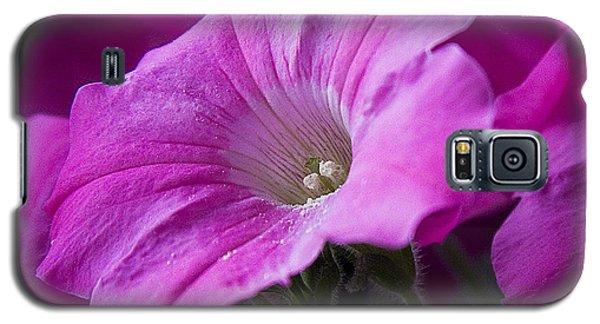 Pink Petunia II Galaxy S5 Case