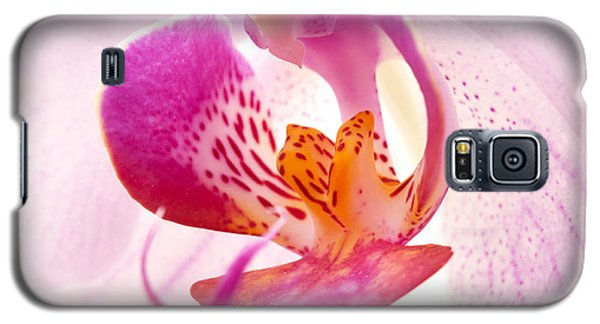 Pink Phalaenopsis Galaxy S5 Case