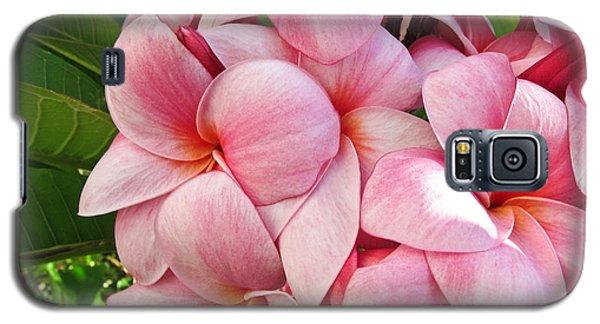 Pink Plumerias Galaxy S5 Case