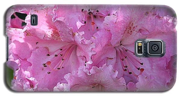 Pink Rhododendrons Galaxy S5 Case