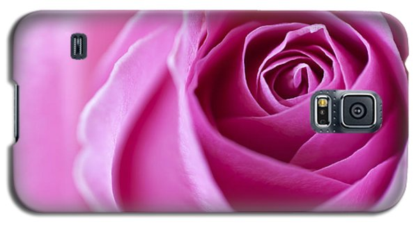Pink Rose Galaxy S5 Case by Ian Merton