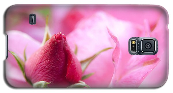 Pink Rose Galaxy S5 Case by Jeannette Hunt