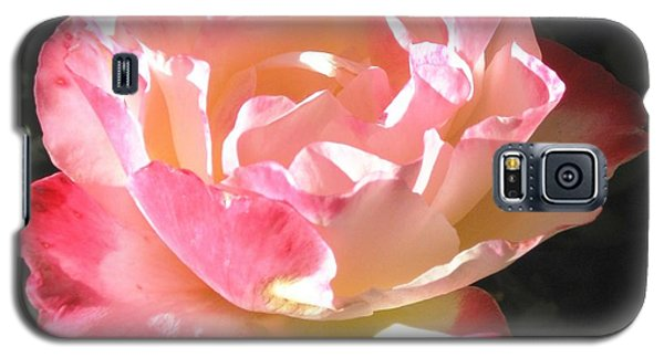Galaxy S5 Case featuring the photograph Pink Rose by Sue Halstenberg
