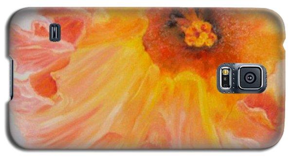 Pink Ruffles Galaxy S5 Case