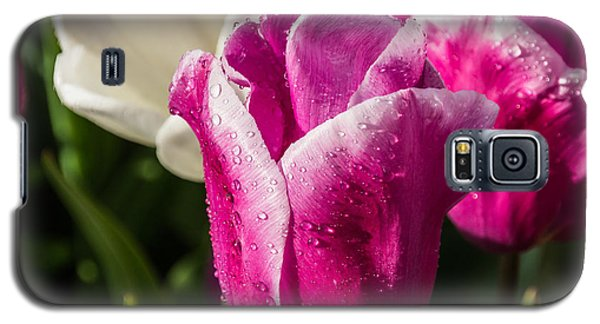 Galaxy S5 Case featuring the photograph Pink Tulip by David Gleeson