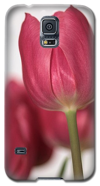 Pink Tullips Galaxy S5 Case