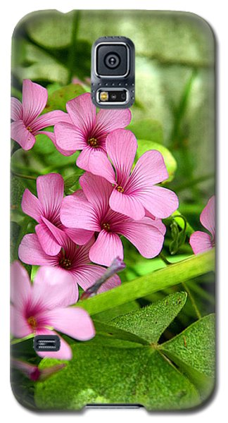 Galaxy S5 Case featuring the photograph Pink Wild Flowers by Ester  Rogers