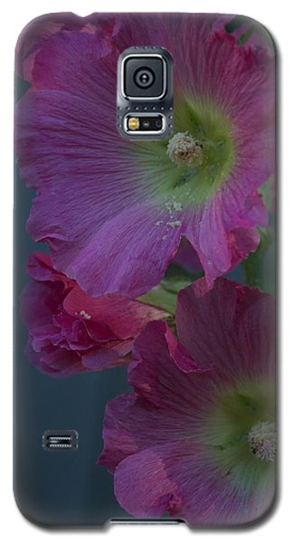 Galaxy S5 Case featuring the photograph Piquant by Joseph Yarbrough