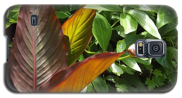 Plants Galaxy S5 Case
