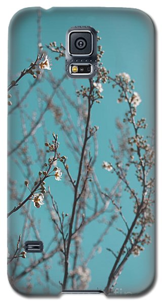 Plum Blossoms Galaxy S5 Case