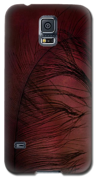 Galaxy S5 Case featuring the photograph Plum Tickled by Robin Dickinson