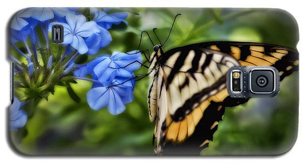Galaxy S5 Case featuring the photograph Plumbago And Swallowtail by Steven Sparks