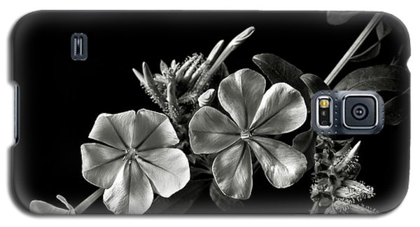 Plumbago In Black And White Galaxy S5 Case