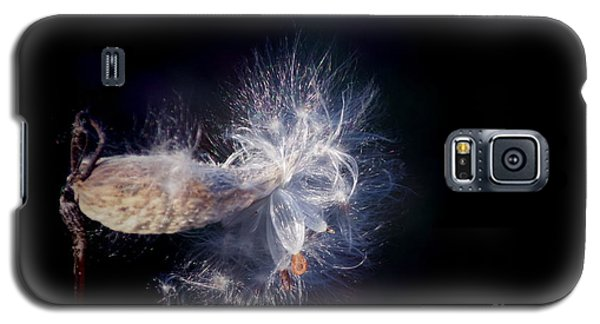 Galaxy S5 Case featuring the photograph Pod In The Wind by Deniece Platt