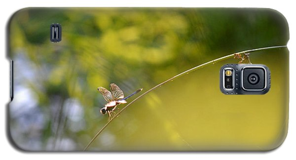 Galaxy S5 Case featuring the photograph Pond-side Perch by JD Grimes