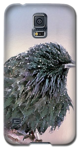 Poor Decision Galaxy S5 Case by Betty LaRue