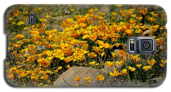 Poppies Everywhere Galaxy S5 Case by Vicki Pelham