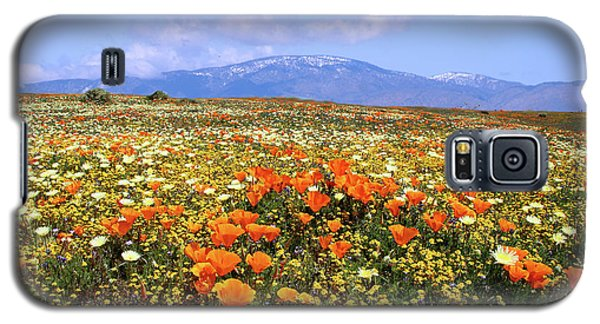 Poppies Over The Mountain Galaxy S5 Case by Peter Tellone